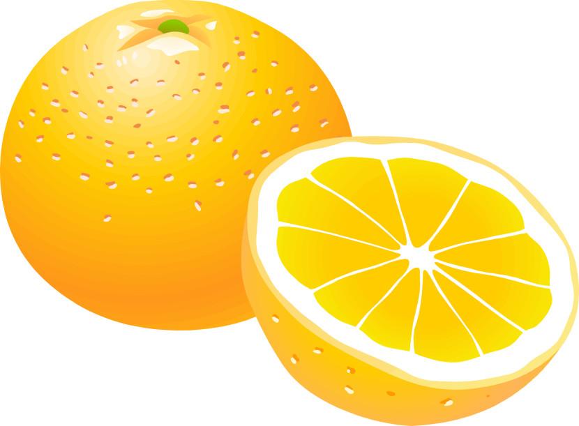 Orange clipart #18, Download drawings