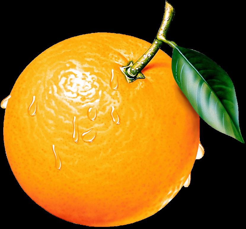 Orange clipart #5, Download drawings