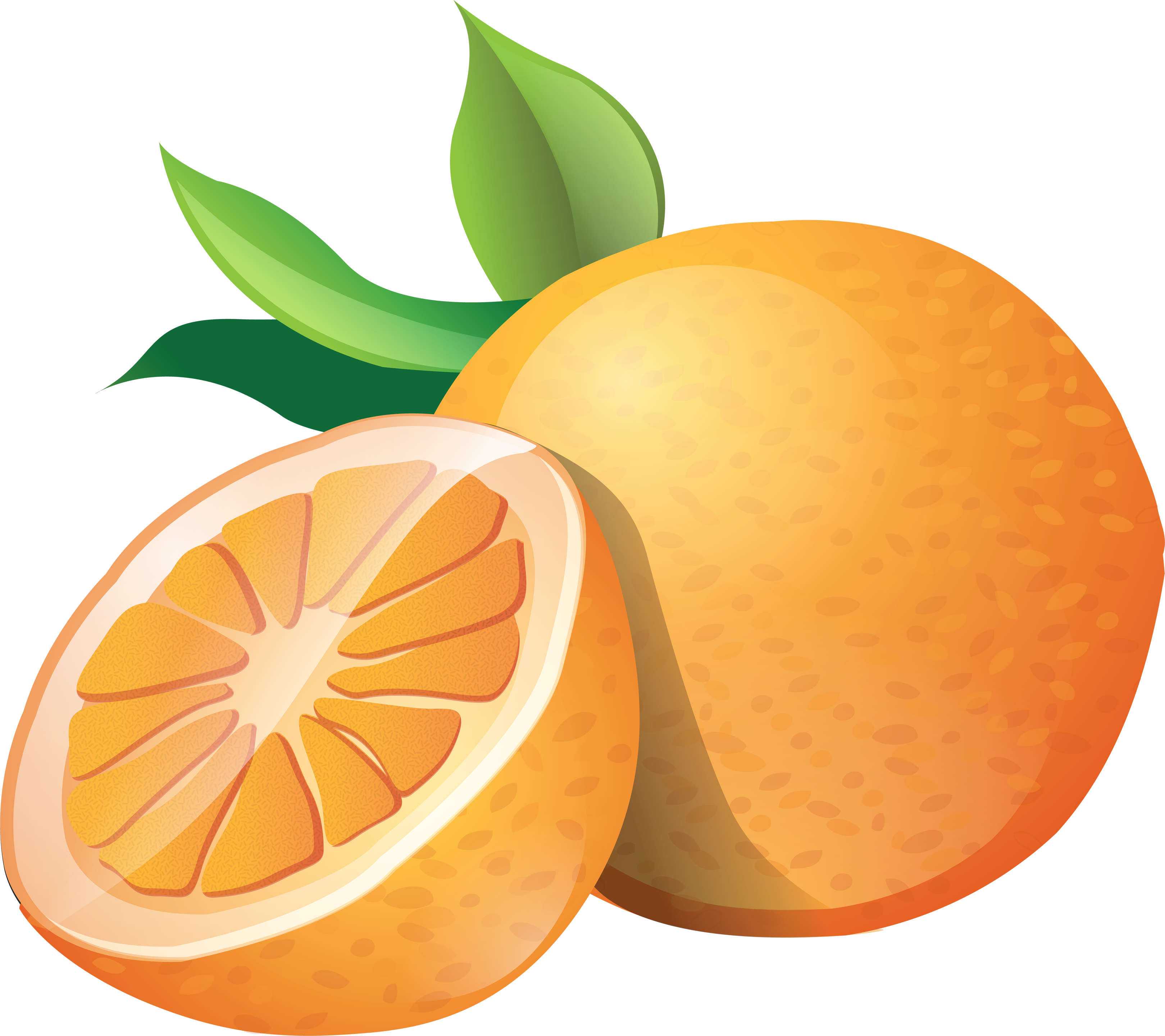 Orange clipart #2, Download drawings
