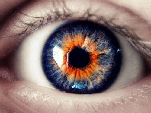 Orange Eyes coloring #7, Download drawings