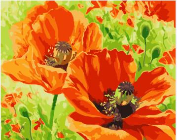 Orange Flower coloring #17, Download drawings