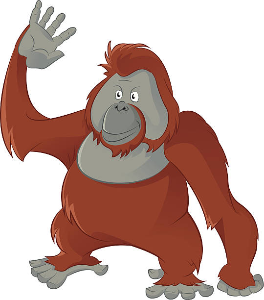 Orangutan clipart #5, Download drawings
