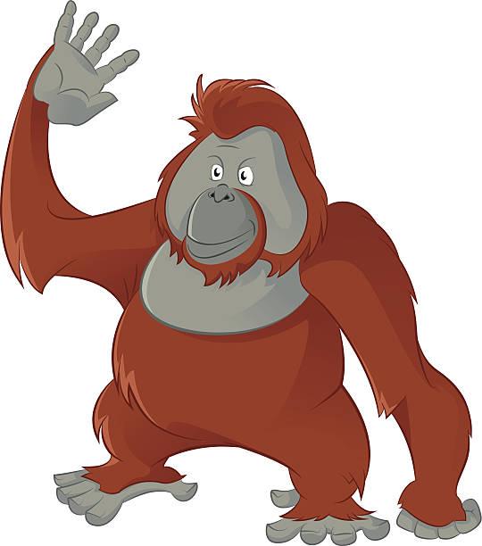 Orangutan clipart #5, Download drawings
