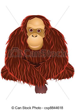 Orangutan clipart #1, Download drawings