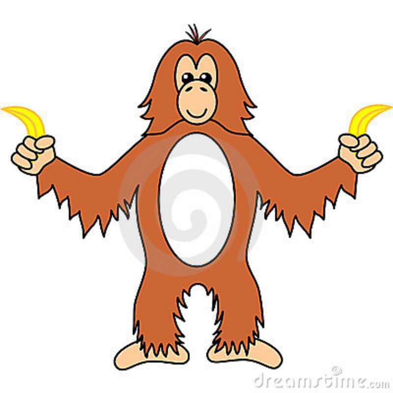 Orangutan clipart #18, Download drawings