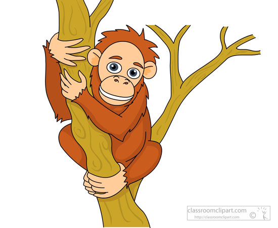 Orangutan clipart #15, Download drawings