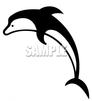 Orca clipart #16, Download drawings