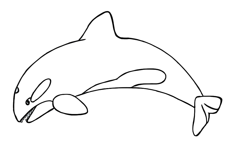 Orca clipart #7, Download drawings