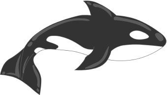 Orca clipart #1, Download drawings