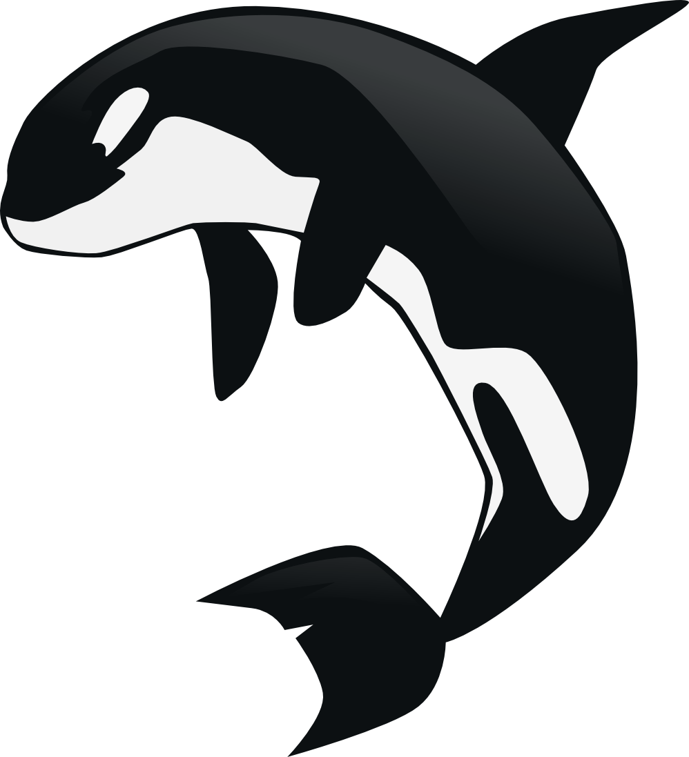 Orca clipart #8, Download drawings
