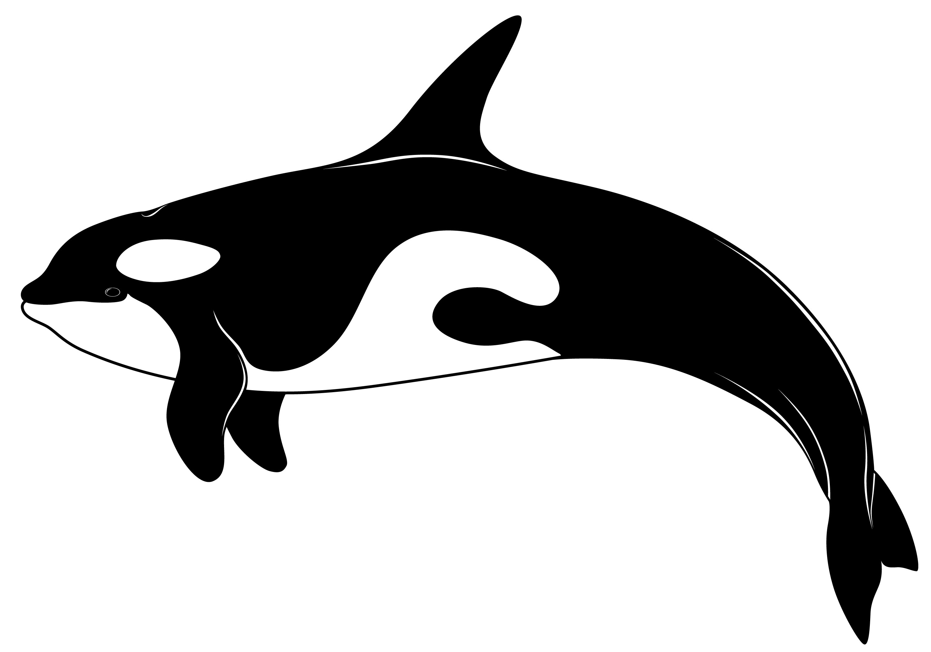 Orca clipart #4, Download drawings