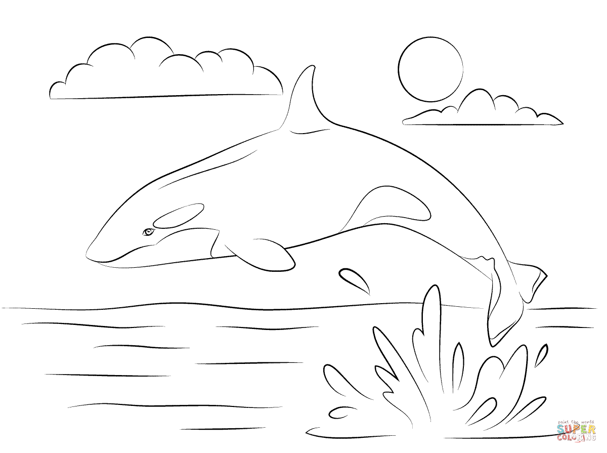 Orca coloring #2, Download drawings