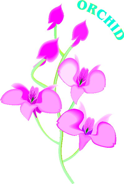 Orchid clipart #7, Download drawings