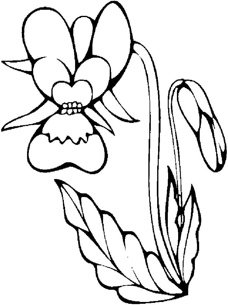 Orchid coloring #10, Download drawings
