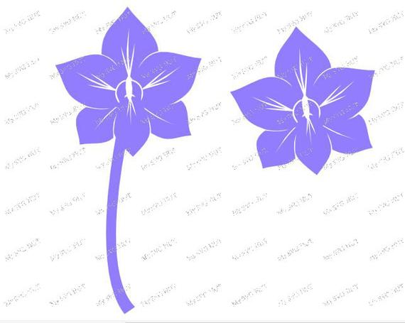 Orchid svg #373, Download drawings