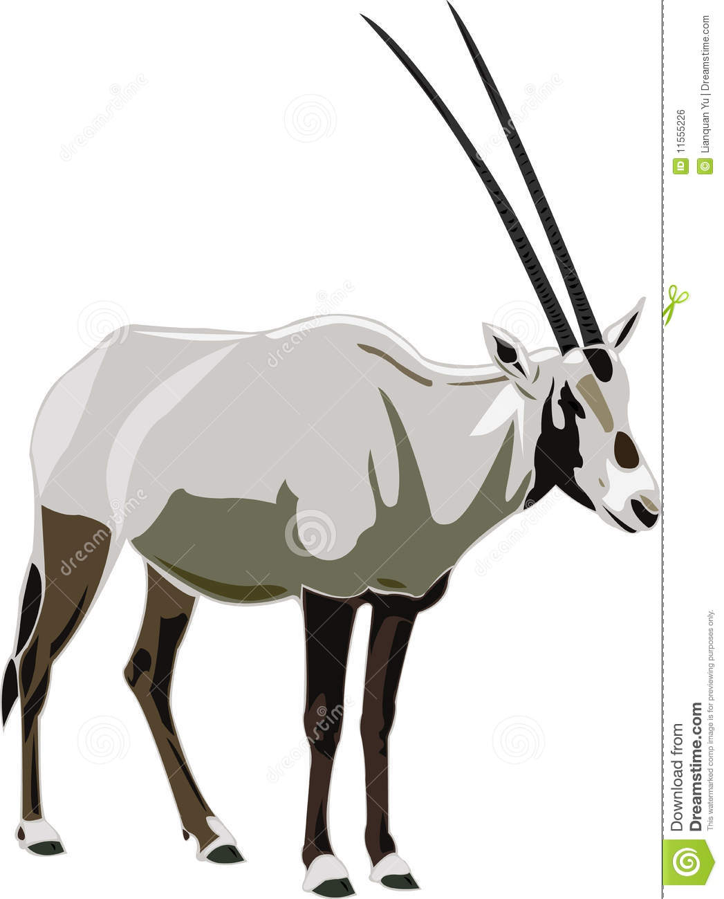 Oryx clipart #14, Download drawings