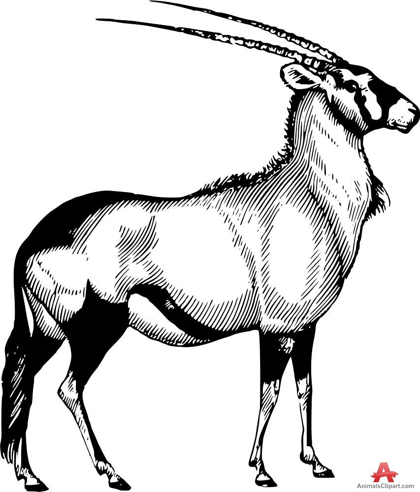 Oryx clipart #9, Download drawings