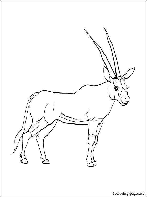 Oryx coloring #5, Download drawings