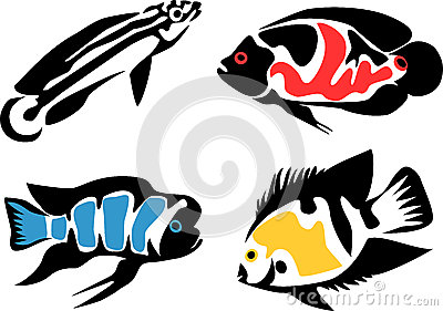 Oscar (Fish) clipart #19, Download drawings