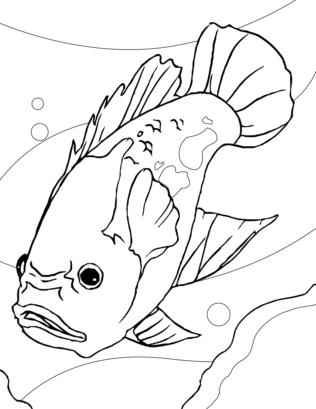 Oscar (Fish) coloring #6, Download drawings