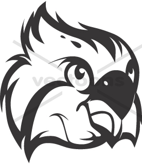 Osprey clipart #13, Download drawings