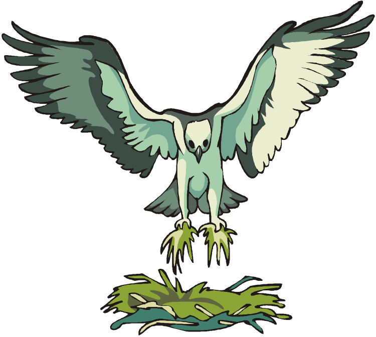 Osprey clipart #5, Download drawings