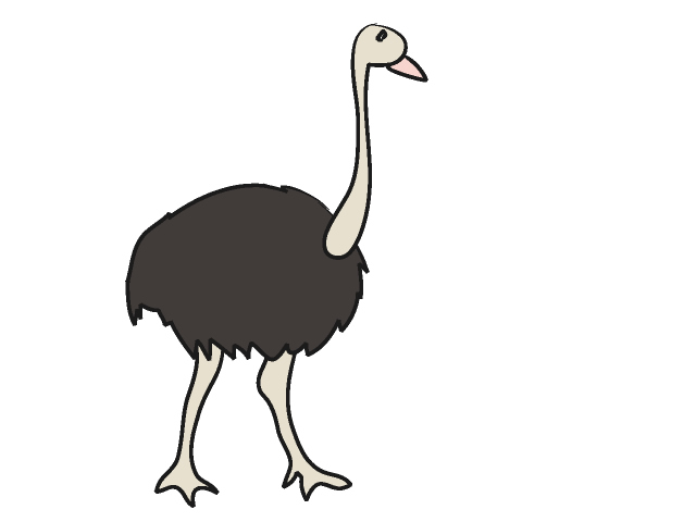 Ostrich clipart #14, Download drawings