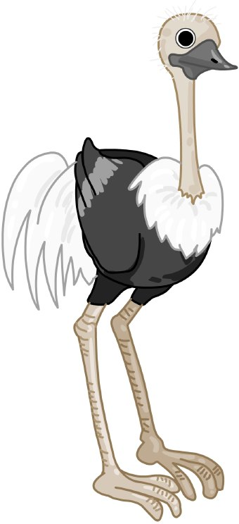 Ostrich clipart #6, Download drawings