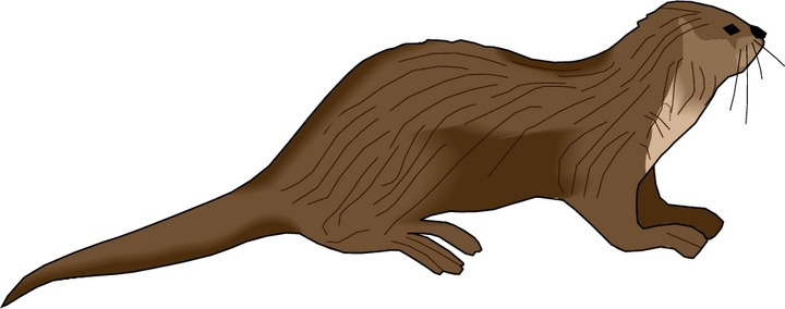 Otter clipart #3, Download drawings