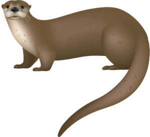 Otter clipart #18, Download drawings