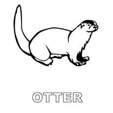 Otter coloring #8, Download drawings
