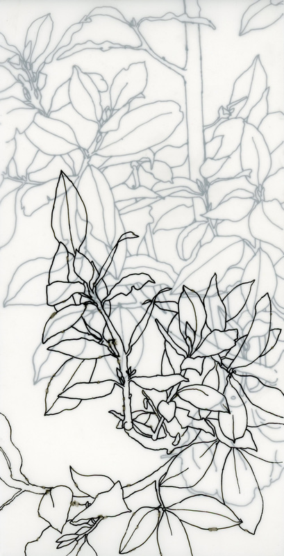 Overgrowth coloring #9, Download drawings