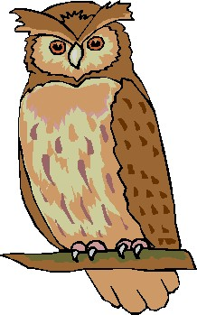 Owl clipart #11, Download drawings