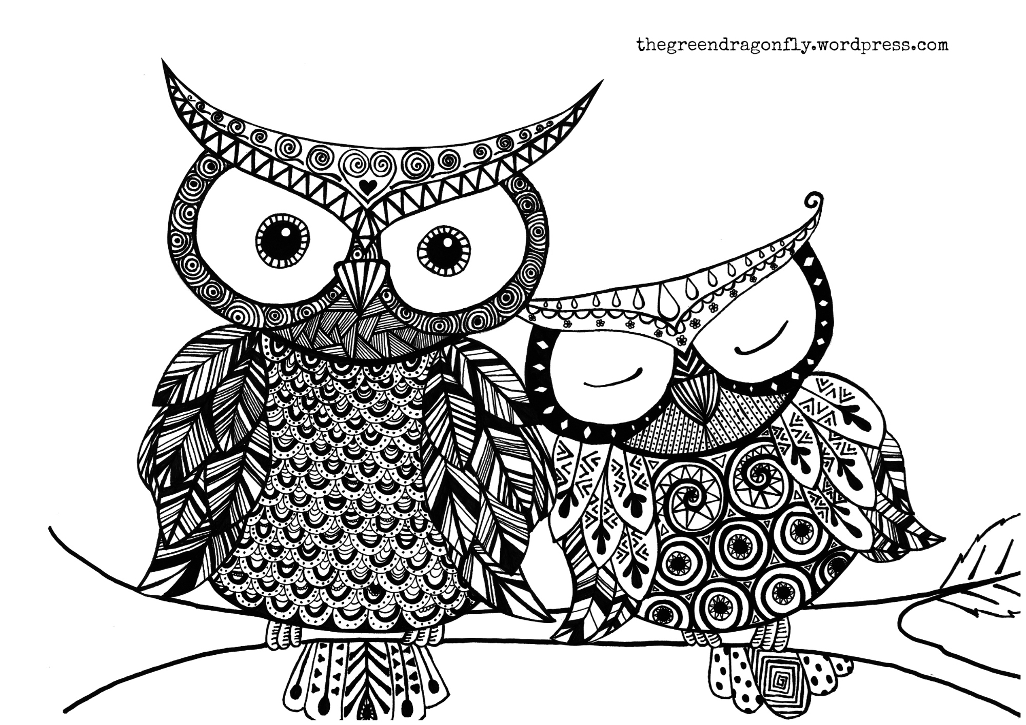 Owl coloring #1, Download drawings