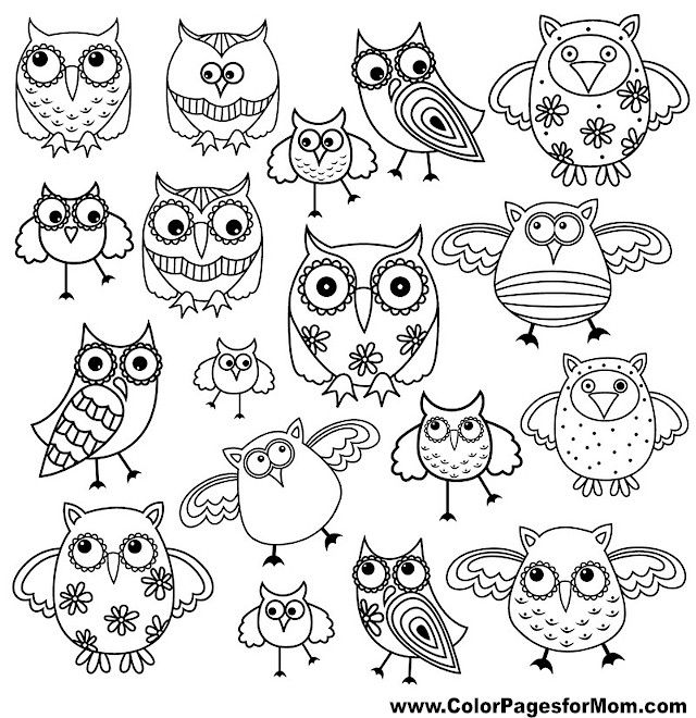 Owl coloring #3, Download drawings
