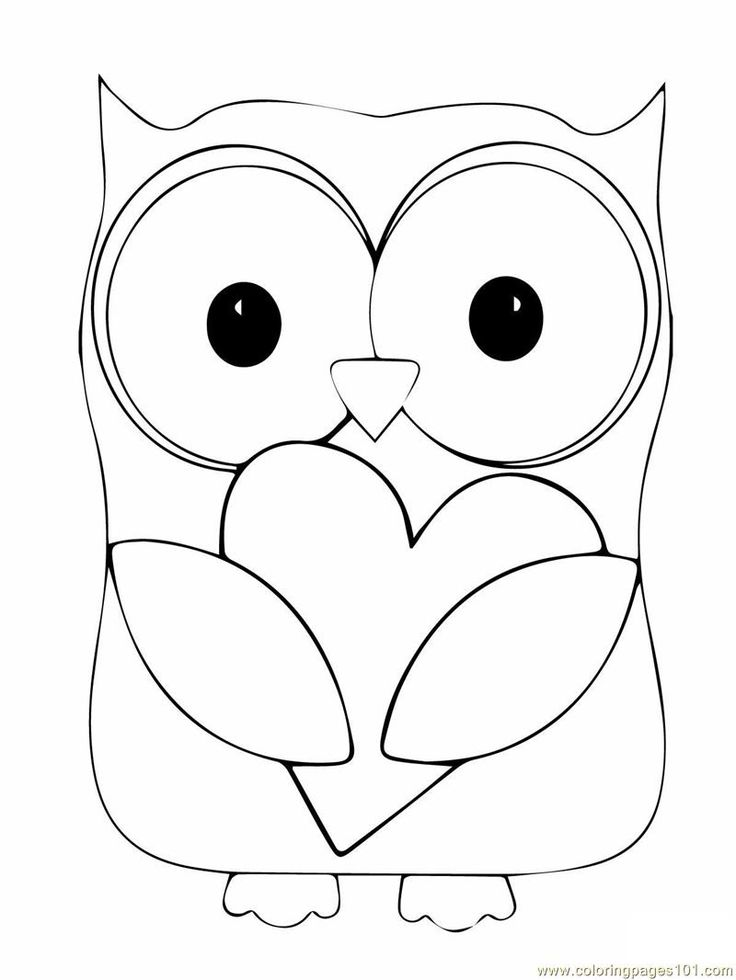 Owl coloring #4, Download drawings