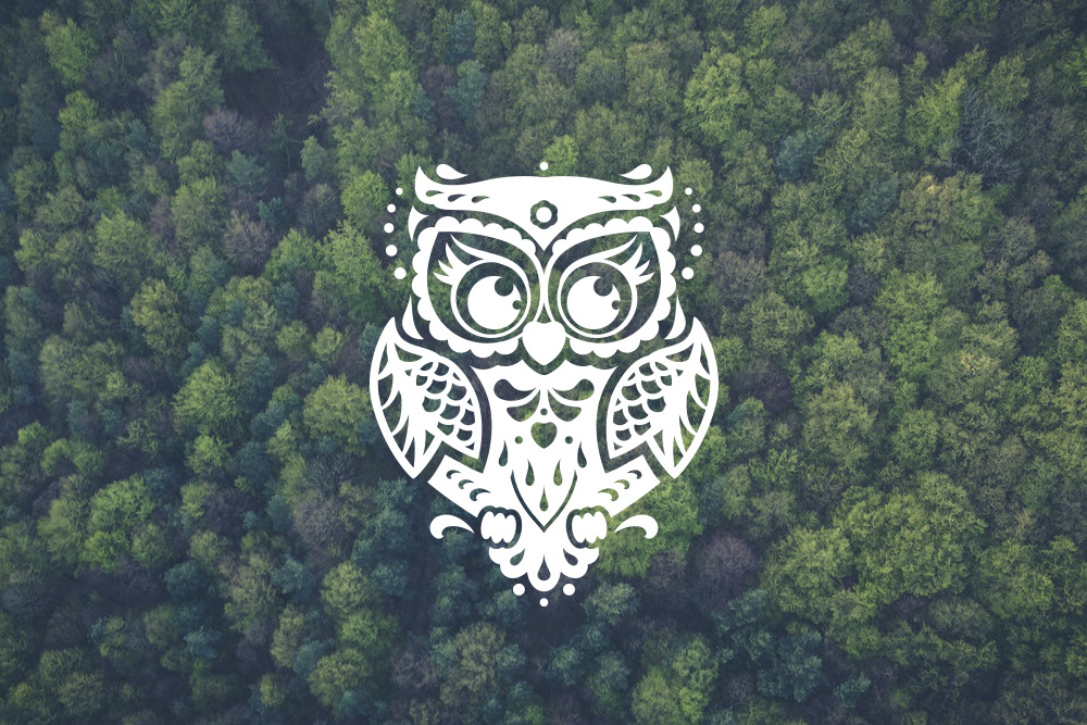 owl svg free #684, Download drawings