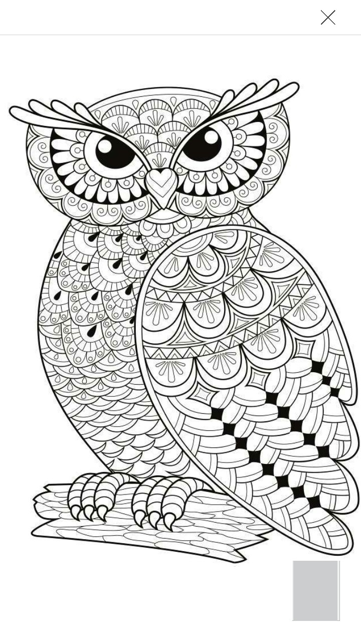 Owlet coloring #13, Download drawings
