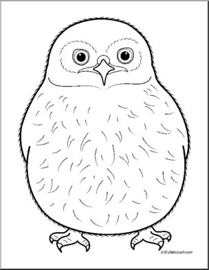 Owlet coloring #6, Download drawings