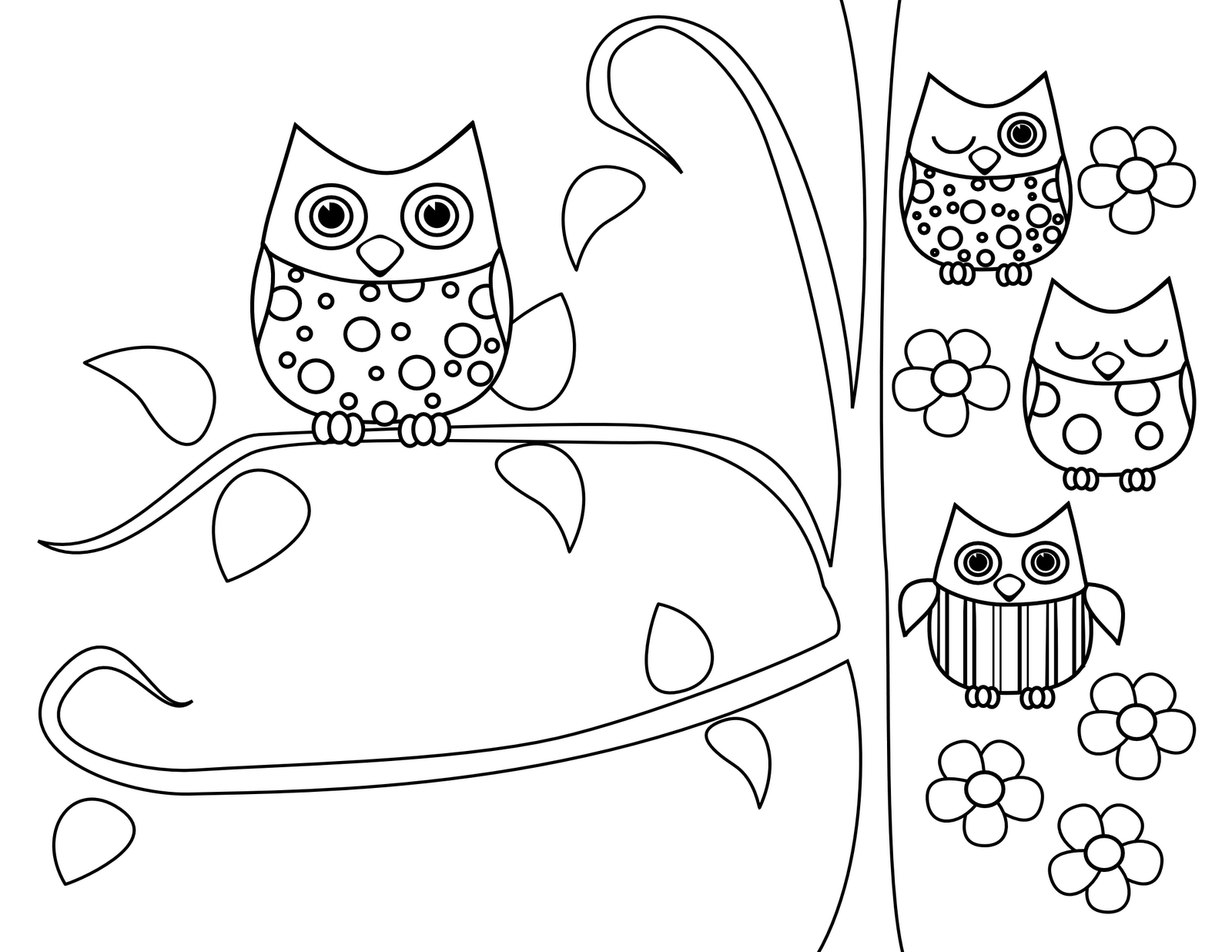 Owlet coloring #3, Download drawings