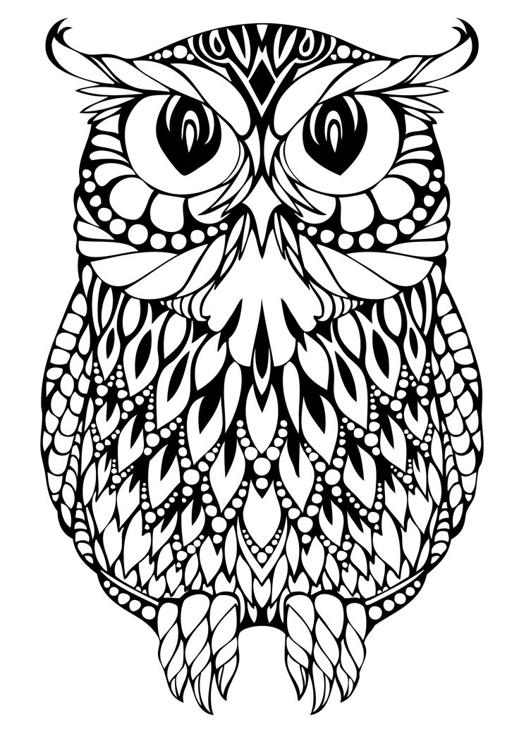 Owlet coloring #2, Download drawings