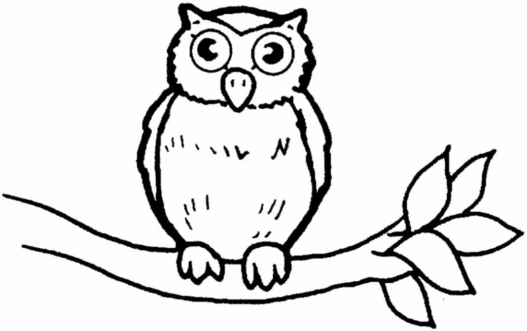 Owlet coloring #18, Download drawings
