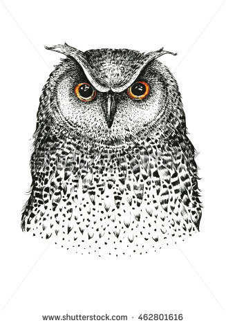 Owlfly coloring #3, Download drawings
