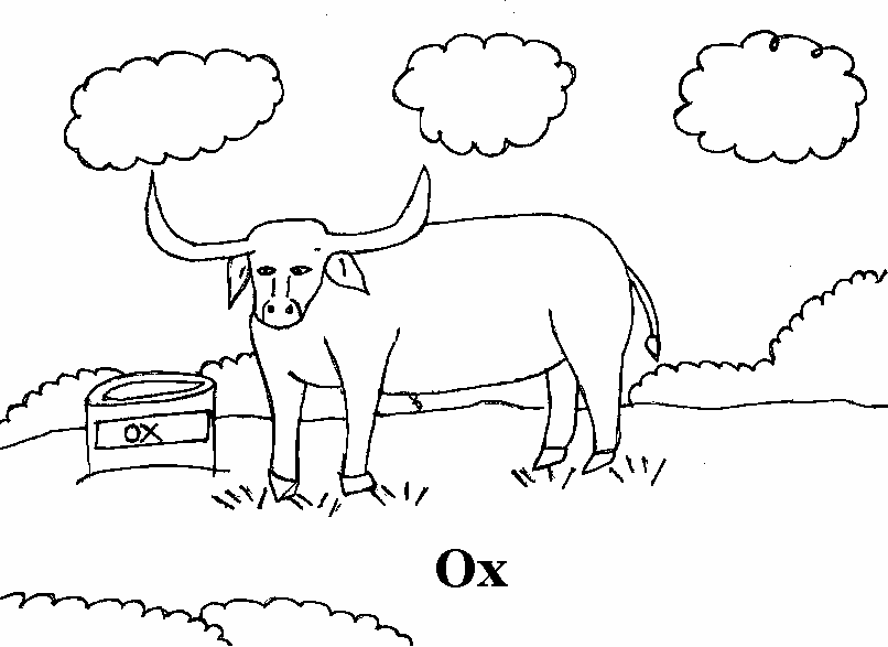 Ox coloring #7, Download drawings