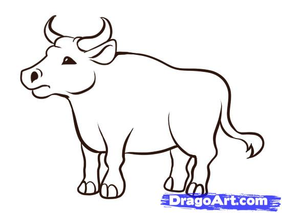 Ox coloring #16, Download drawings