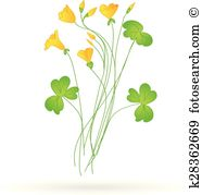 Oxalis clipart #18, Download drawings