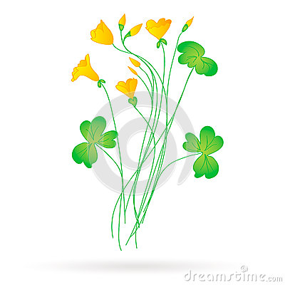 Oxalis clipart #20, Download drawings