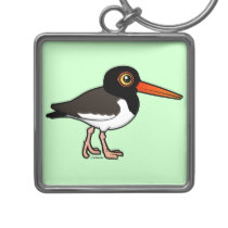 Oystercatcher coloring #12, Download drawings