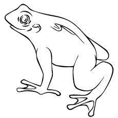 Pac-man Frog coloring #18, Download drawings