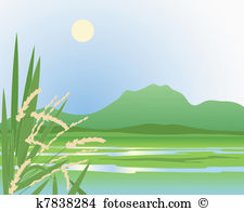 Paddy Field clipart #19, Download drawings